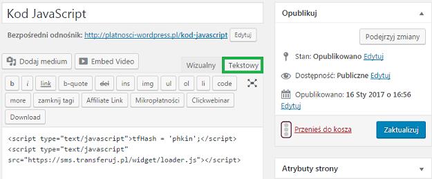 wklej kod javascript w edytorze wordpress