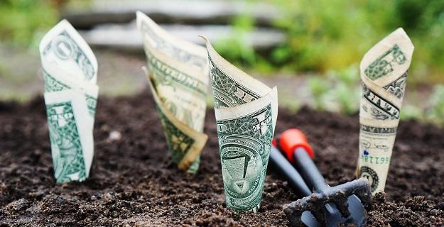 fundusz unikorona jak inwestuja polacy